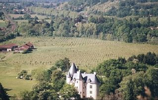 Saint-Martory castle photo - Aerial view with our tree plantation in background