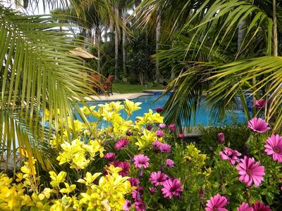 Tropical Private Gardens surround the Pool and jacuzzi