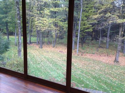 View of back yard from screened-in porch.