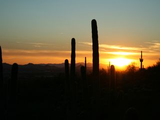 Scottsdale condo photo - Sunset on Gateway Loop Trail (McDowell Mountain) short drive from the condo