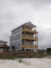 Mexico Beach house photo - Grey Whale taken from beach