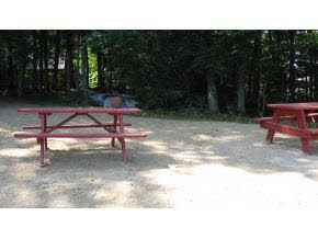 Picnic Area on beach at Hill's Pond