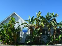 Last Minute Booking Special - The Egret Cottage W/ Beach Views