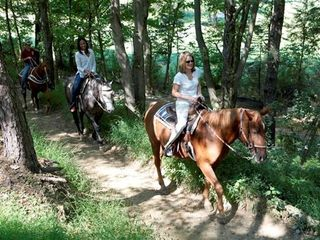 Bushkill house photo - 4 Seasons of Horseback Riding at Fernwood Resort