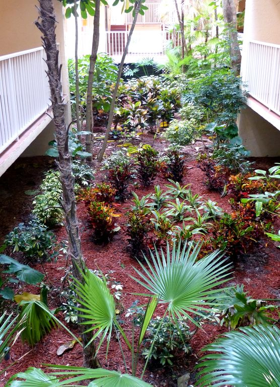 Beautiful tropical atrium right at your door