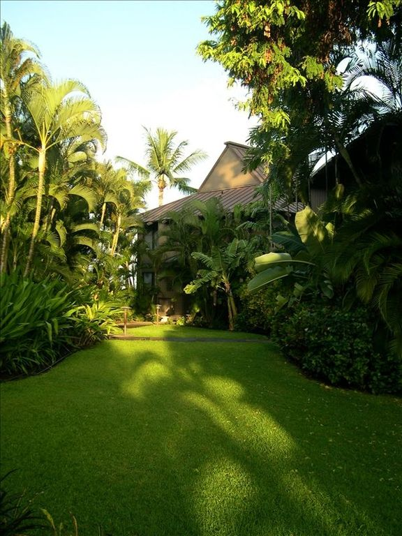 Lush tropical gardens surround your home.