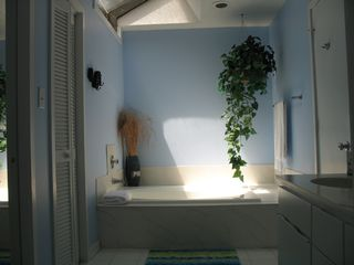 Sea Pines townhome photo - Master bath with skylight