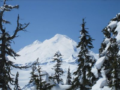 Only 20 miles away! Majestic Mt. Baker! Hiking trails, wildlife, alpine lakes!