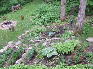 Ithaca lodge photo - Front garden