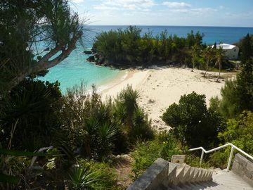 Bermuda STUDIO Rental Picture
