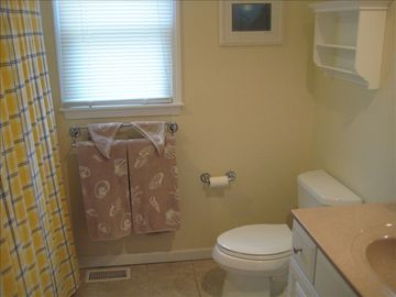 Hall bath with tub shower.