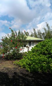 Kalapana cottage rental - The side of the cottage with three of your five windows (photo 2013)