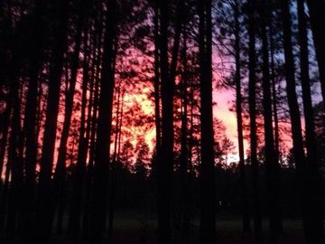 Pinetop cabin rental - summer evening in Pinetop