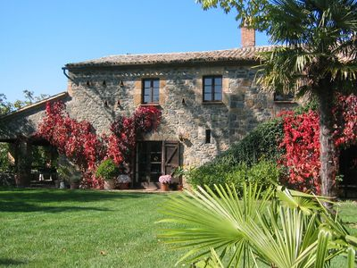 Romantic vineyard surrounded by flower meadows, olive trees for sole-possession