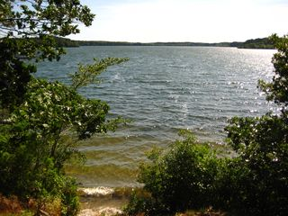 Brewster house photo - Our Private small sandy beach on Upper Mill Pond with easy access canoe rack.