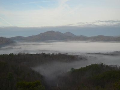 Morning fog...view from upper deck, December 8, 2012.