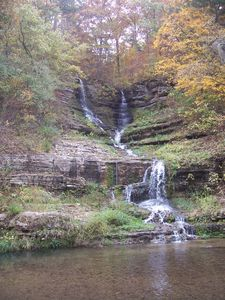 Dogwood Canyon, at just 18 miles away it's a favorite destination of ours!
