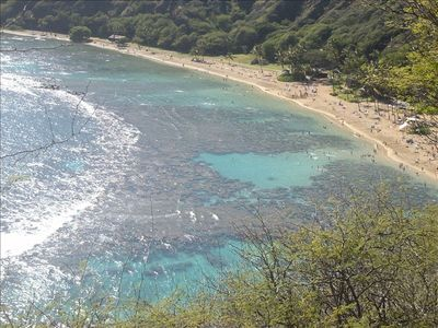 Hanauma Bay ( great snorkeling 20 min. from condo)