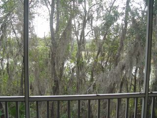 Sun Lake condo photo - View from Porch