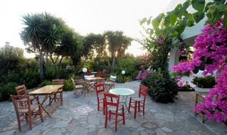 Gouves villa photo - The beautiful gardens for relaxing all times of the day