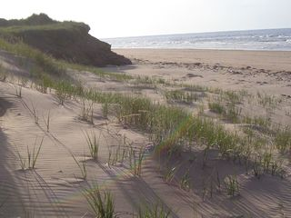 Darnley cottage photo - One of PEIs best beaches