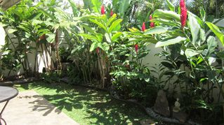 Kihei cottage photo - Full tropical garden, ginger and heliconia and fountain