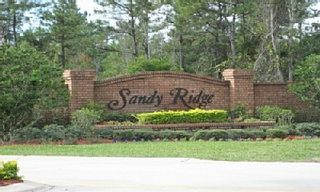 Sandy Ridge villa photo - Sandy Ridge community