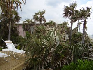 North Palmetto Point cottage photo - Additional Sun Deck & Hammock
