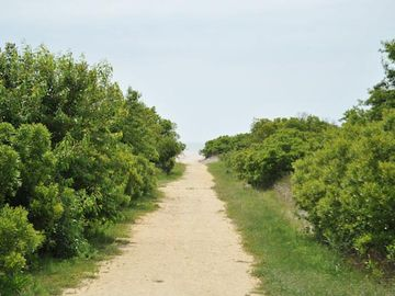 The path through the dune to the beach!