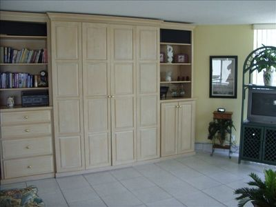 living area--Murphy bed