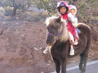 Santa Fe estate photo - Local kids come by with their ponies, great mountain living!