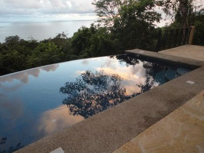 Jungle reflexion in your private pool