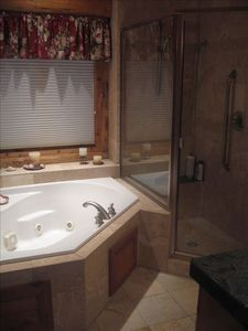 Jetted tub and shower in Master bath
