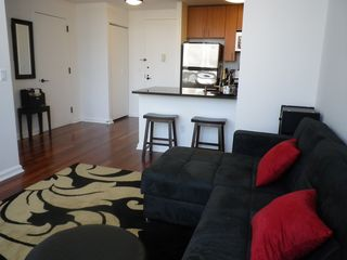Midtown Manhattan apartment photo - livingroom w/ sofabed