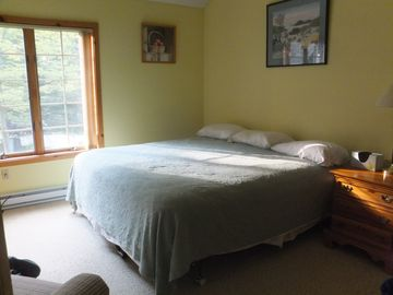 Master Bedroom with TV. Large closet and dresser not shown in photo