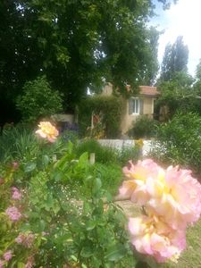 Family holidays in the Luberon (pets allowed)