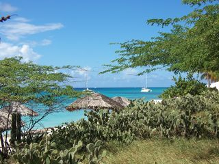 Aruba condo photo - Arashi beach for snorkeling or catamarran trip