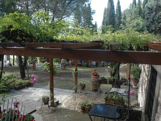 Fiesole villa photo - The Pergola in the garden