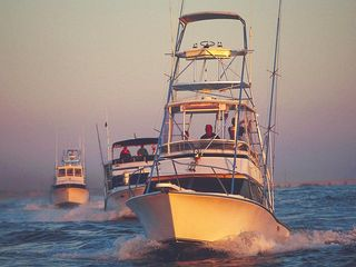 Carolina Beach condo photo - Deep sea fishing at its best