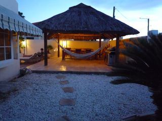 Aruba villa photo - Enjoy the evenings in the hammock under the palapa.