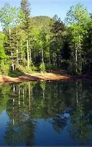 Beauty and tranquility enhance this 1/3 acre trout pond outside your door.