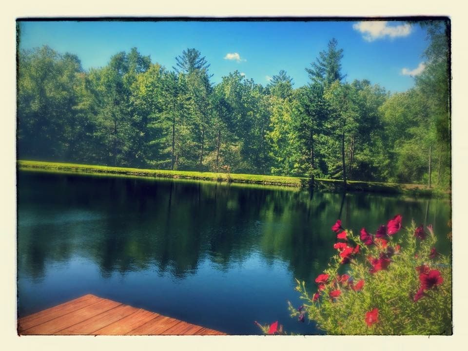 Relax on your private pond. Multi level dock/pergola with pic-nic table.