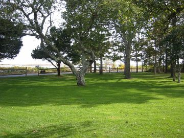 Front Lawn - view to River