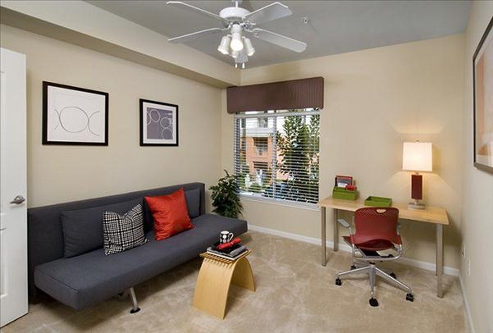 Gorgeous 1 Bedroom Apartment In San Mateo Homeaway