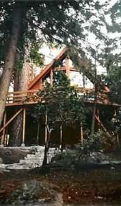 Idyllwild cabin rental - photo of home