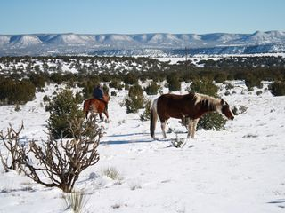 Mountainair villa photo - Winter Mesa View from Two Ponyz Ranch