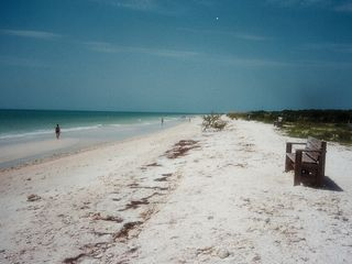 New Port Richey mobile home photo - Local Beach - Honeymoon Island State Park - July 2010