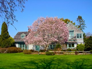 Water Mill house photo - Front of House with Magnolia Tree