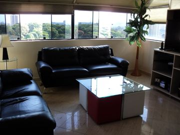 Sao Paulo APARTMENT Rental Picture