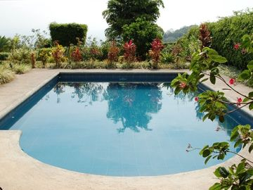 Warm and inviting very Private Solar heated pool